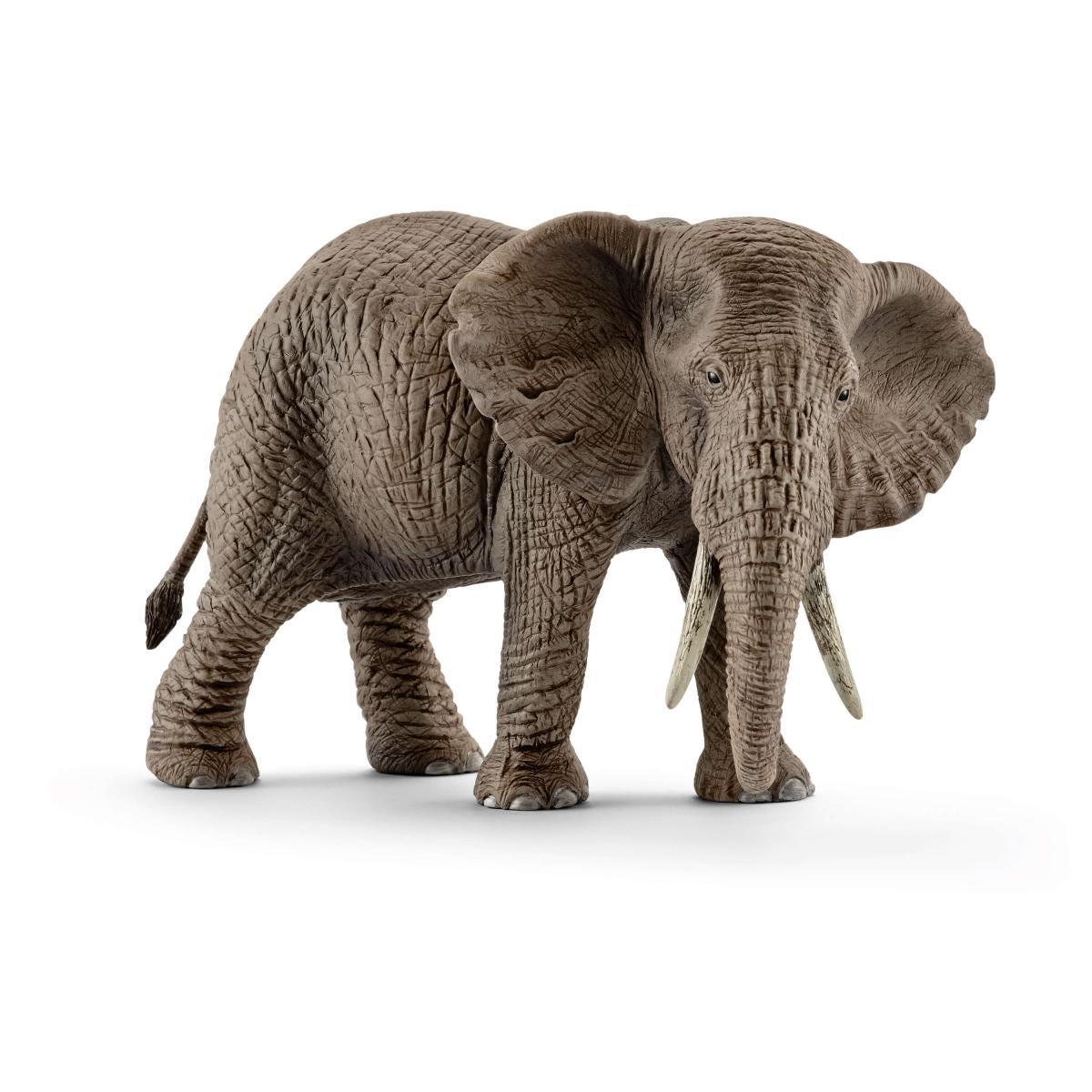 Schleich 14762 Elephant Wild Life NEU