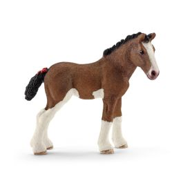 Clydesdale Fohlen