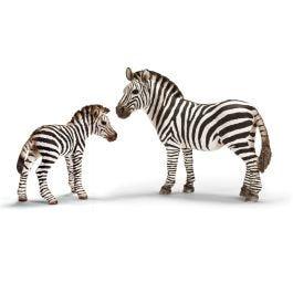 Zebra female and zebra foal