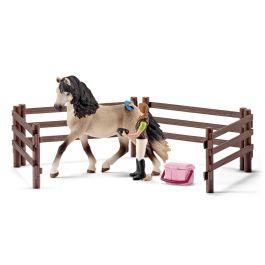 Pferdepflegeset, Andalusier