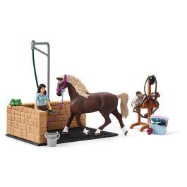 Washing Area with Horse Club Emily & Luna