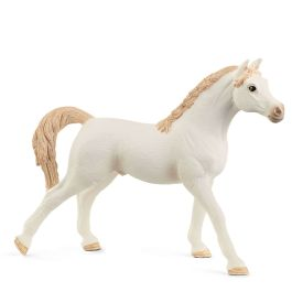 Arabian Stallion, white