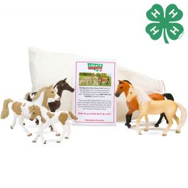 Schleich & 4-H  Horse Club 5 Piece Horses Bundle with Story Starter Pouch