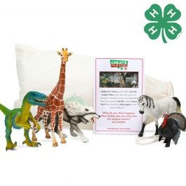 Schleich & 4-H 5 Piece Creative Story Bundle with Story Starter Pouch