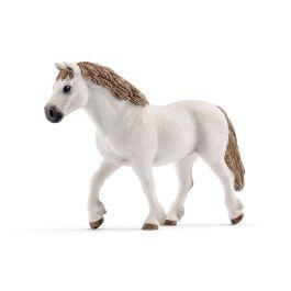 Welsh-ponni hoppe