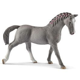 Тракененская лошадь, кобыла