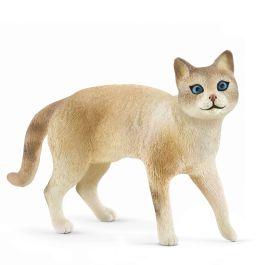 Siamese cat - User Voted Animal