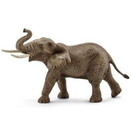 アフリカ象(オス)