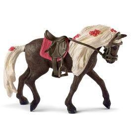 Jument Rocky Mountain Horse Spectacle équestre