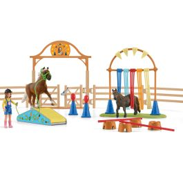 Pony agility training